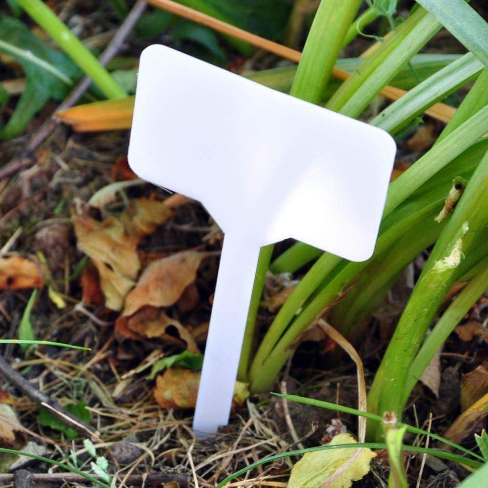 ASAB Paquete de 10 Etiquetas de plástico para Plantas, Color ...