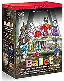 Ballets pour les enfants : Alice au pays des merveilles, Pierre et le Loup, Casse-noisette, Les Contes de Béatrix Potter