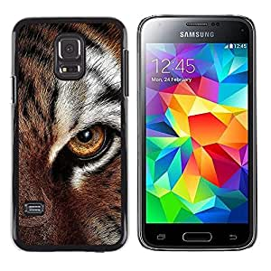 Stuss Case / Funda Carcasa protectora - Eye Feline Tiger Fur Cute Cat Big Animal - Samsung Galaxy S5 Mini, SM-G800, NOT S5 REGULAR!