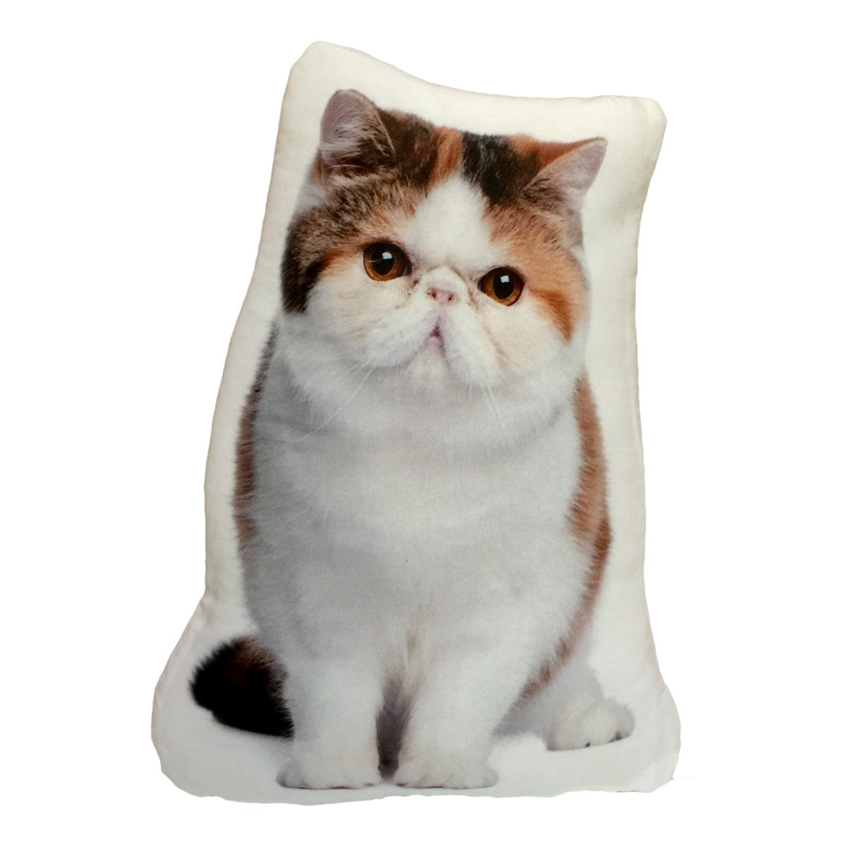 Amazon.com: K & K Cat Decorative Shaped Pillow (Exotic Short-Hair ...