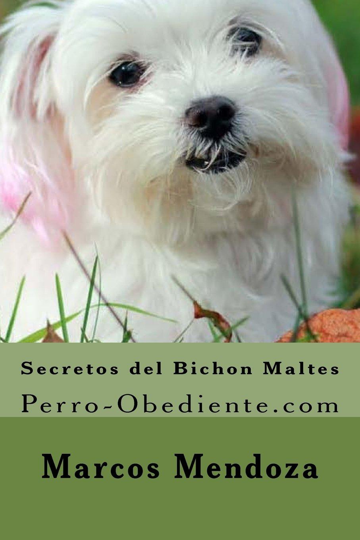 Secretos del Bichon Maltes: Perro-Obediente.com: Amazon.es: Marcos Mendoza: Libros