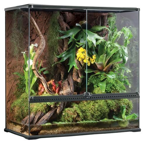 Exo Terra High Glass Terrarium, 36 by 18 by 36-Inch by Exo Terra