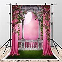 SUSU Garden Photo Studio Backgrounds Gallery Pink Photographic Backdrops 5x7ft Balcony Photography Props