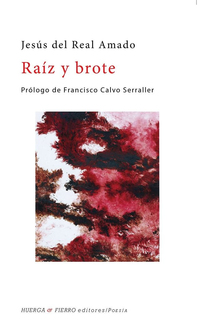 RAÍZ Y BROTE (Spanish) Paperback