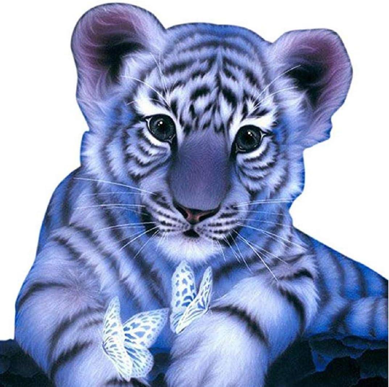 TOPOB DIY 5D Kit de pintura de diamantes por números, bonito tigre ...