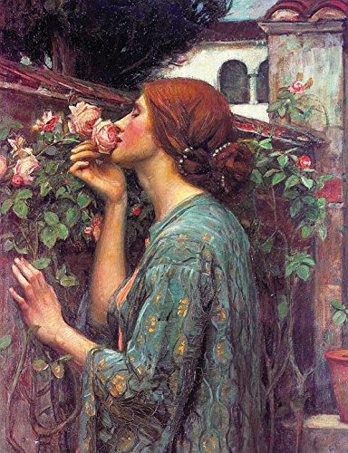 - My Sweet Rose by John William Waterhouse - 20