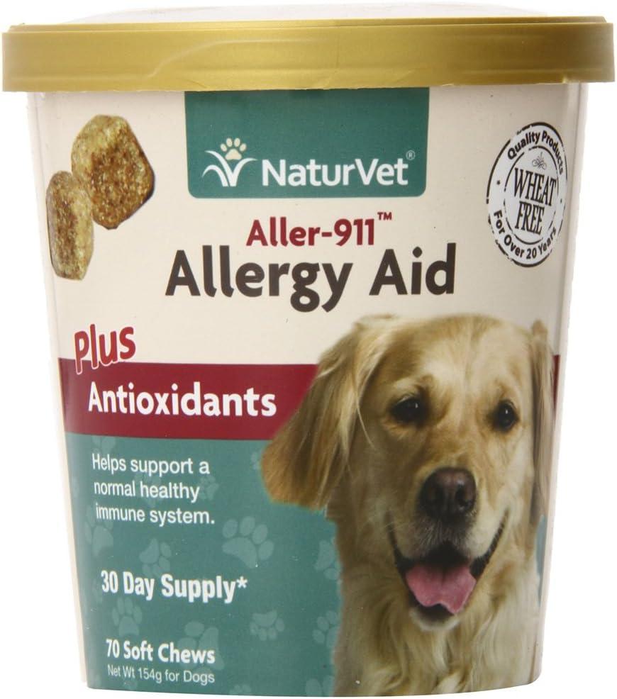 Vitamin Supplements Allergies
