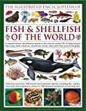 The Illustrated Encyclopedia of Fish & Shellfish of the World: A natural history identification guide to the diverse animal life of deep oceans, open ... with 1700 illustrations, maps and photographs