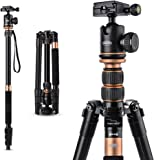 """Camera Tripod, TYCKA 55""""Lightweight Aluminum Portable Travel Tripod with 1/4"""" Quick Release Plate, 360 Degree Panorama Ball Head and Carrying Bag"""