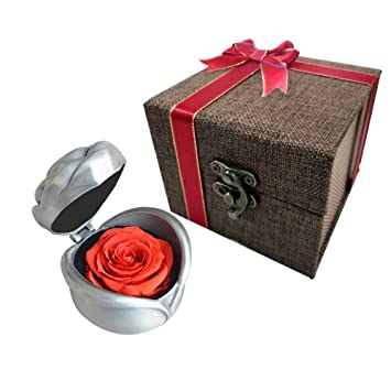 Amazon Com Preserved Flower Rose Unique Surprise For Women Her