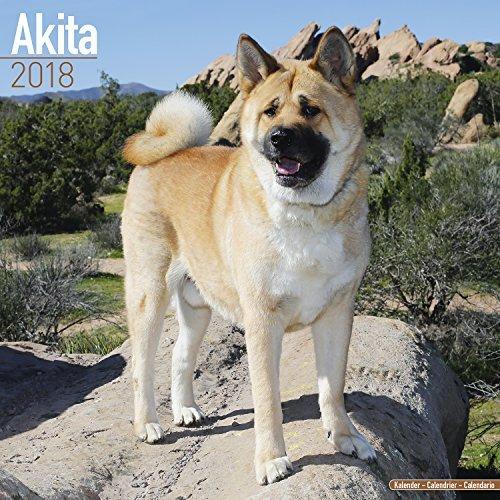 Akita Calendar 2018 - Dog Breed Calendar - Premium Wall Calendar 2017-2018