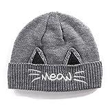 Jeff & Aimy Cat Ears Beanie Pussy Cat Hat Fleece Beanie Warm Winter Hats for Women Wool Knitted Cat Cap Gray Grey