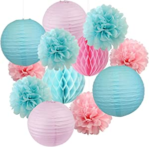 Sogorge Gender Reveal Party Decorations Baby Shower Decorations Baby Blue Pink Tissue Paper Pom Pom Flowers Paper Lanterns for Birthday/Pink and Blue Decorations /Gender Reveal Decorations