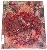 Vanishing Animal Neighbors, Geraldine M. Gutfreund, 0531200604