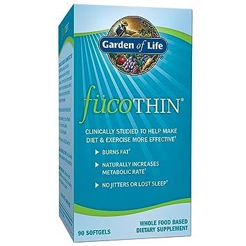 Amazoncom Garden of Life Fucoxanthin Supplements FucoThin Diet