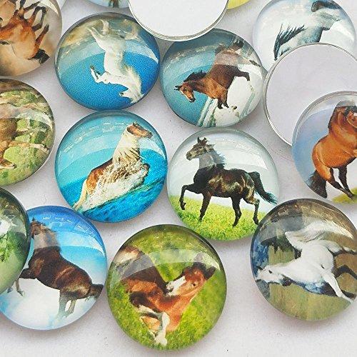Dandan DIY 30pcs Assorted Styles Horse Glass Flatback Flat Backs Button Glass Cameo Cabochon Phonecover Scrapbooking DIY Craft (25mm(1