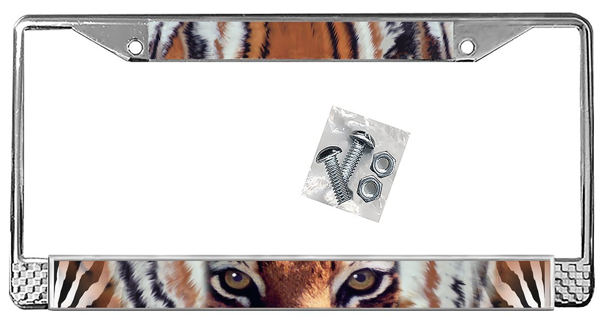 Tiger Eyes Zebra Print Auto License Plate Frame Personalize