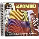 Ayombe!: The Heart of Colombia's Música Vallenata