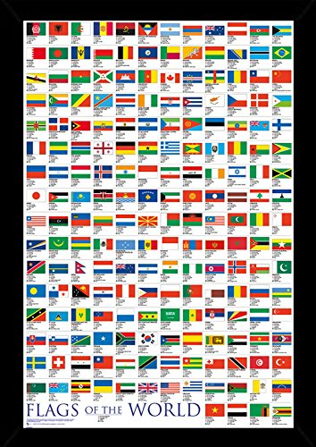 Flags of the World Poster in a Black Poster Frame  24508-PSA
