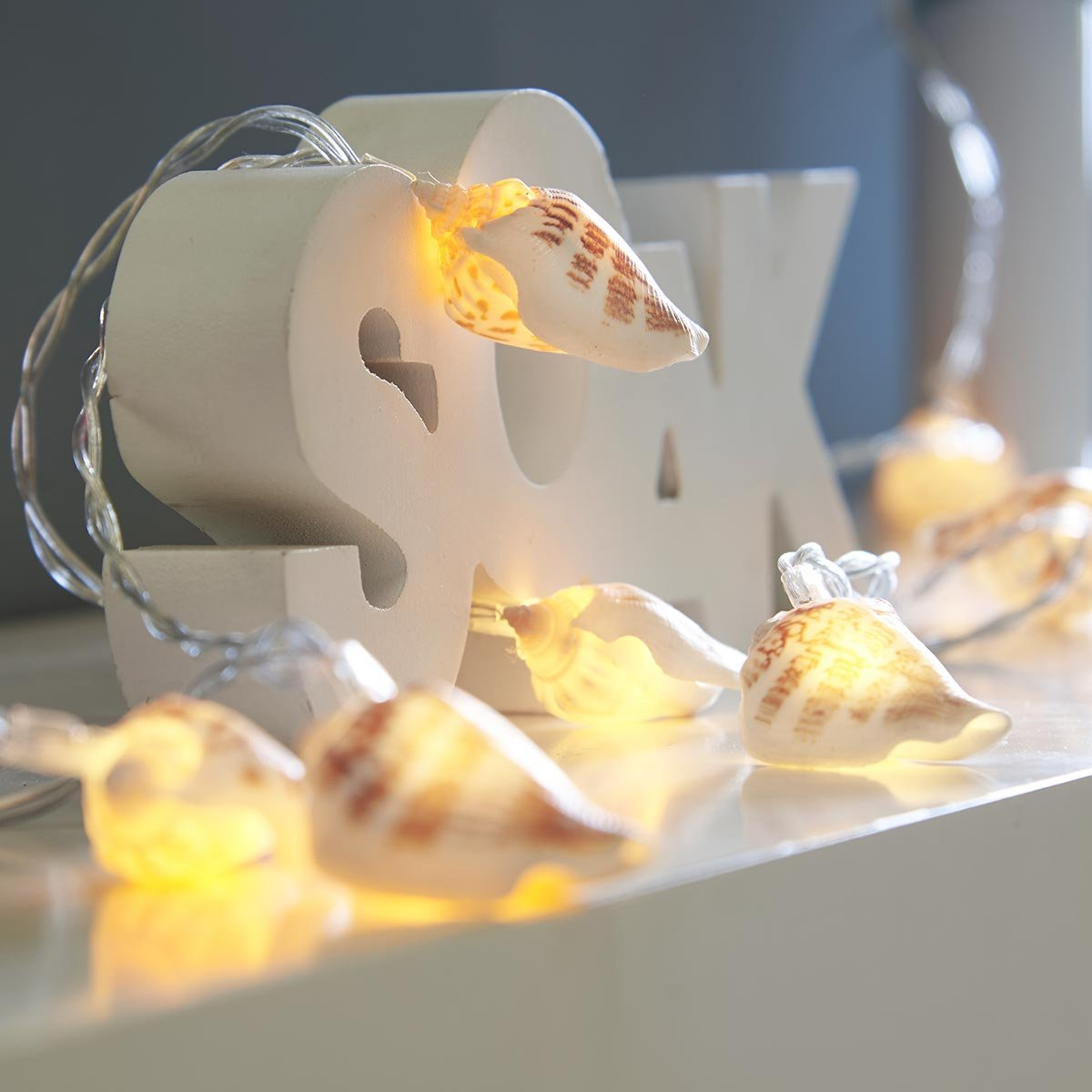 Festive Lights Sea Shell Fairy Lights - Battery Operated - 10 Warm White LEDs - Real Shells - Timer