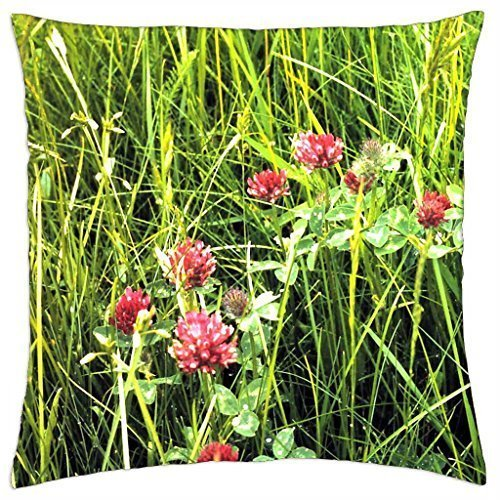 Verna Christopher Red Clover Flowers in the field - Throw Pillow Cover Case (Clover Red Christophers)
