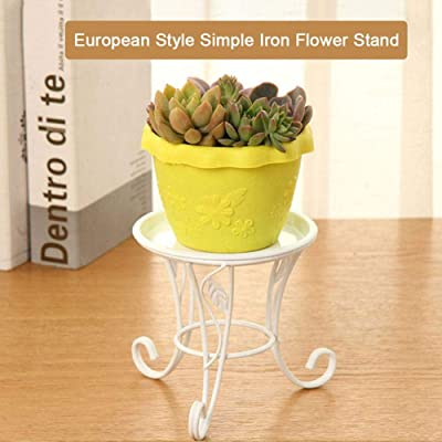 Mini Potted Plant Stand Indoor Iron Flowerpot Holder Rustproof Durable Metal Garden Container Outdoor Decorative Round Supports for Home Garden Patio Indoor Outdoor : Garden & Outdoor