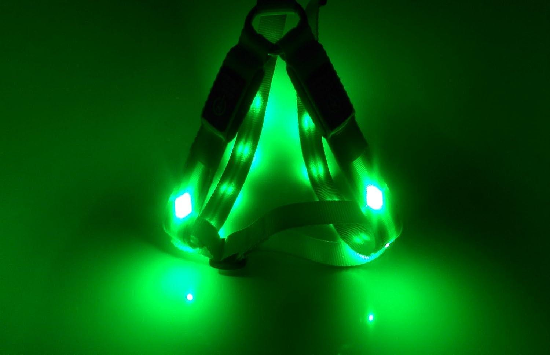 GoDoggie-GLOW - Arnés de seguridad para perro, reflectante con LED ...