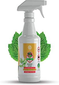 GERMOFIN Natural Mice Repellent Spray - Peppermint Oil - Humane Mouse Trap Substitute - Made in USA - 16 oz Organic Spray - Guaranteed Effective - Works for All Types of Mice & Rats