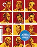 Cover Image for '12 Angry Men (Criterion Collection)'