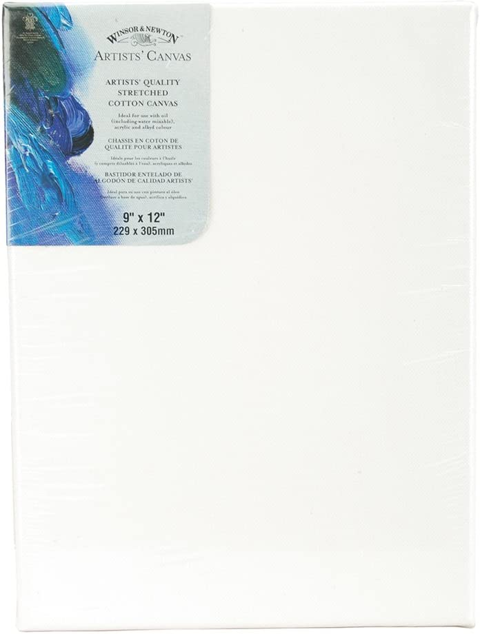 """Stretched Canvas for Artists 9x12/"""" 6 pack"""