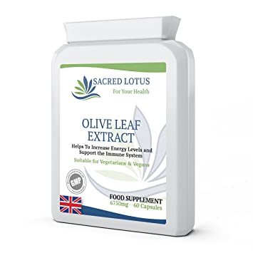 OLIVE LEAF EXTRACT HIGH STRENGTH 6750 MG X 60 CAPSULES - MANUFACTURED IN UK  TO GMP STANDARDS- SACRED LOTUS
