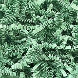 Black Cat Avenue 1 LB Mint Crinkle Cut Paper Shred Filler For Gift Wrap and Basket Filler