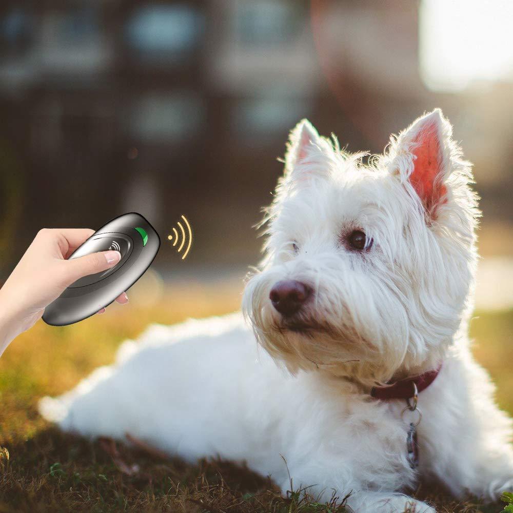 Grigio Petilleur Antiabbaio per Cani Ultrasuoni a Mano Antiabbaio per Cani Portatile da Esterno e Interno