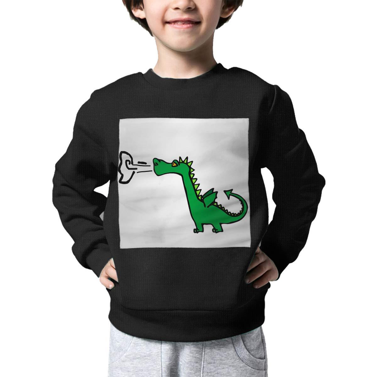 BaPaLa Gastronomy Dinosaur Boys Pullover Sweater Lovely Crew Neck Knitted Sweater for 2-6T