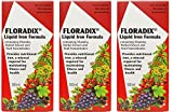 (3 PACK) - Floradix - Floradix Liquid Iron Formula | 500ml | 3 PACK BUNDLE