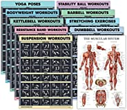 10 Pack - Exercise Workout Poster Set - Dumbbell, Suspension, Kettlebell, Resistance Bands, Stretching, Bodywe