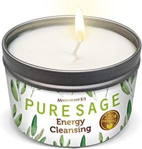 MAGNIFICENT101 Pure White Sage Smudge Candle for Home Energy Cleansing, Banishes Negative Energy I Purification and Chakra Healing - Natural Soy Wax Tin Candle for Aromatherapy (Pure White Sage)