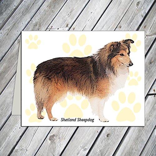 - Shetland Sheepdog Note Cards