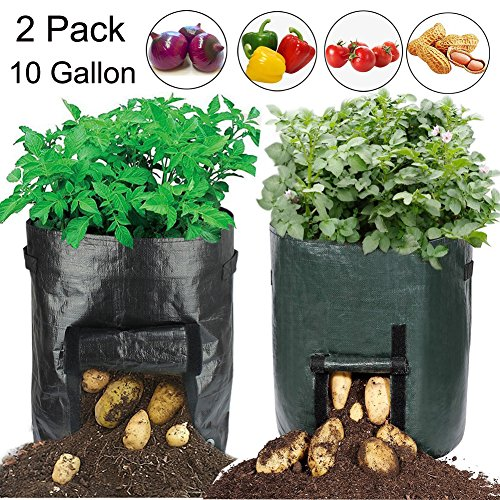 19.7 Inch Garden Planter Bag,10 Gallon Vegetables Grow Bags with Access Flap and Handles for Harvesting Potato,Carrot & (Vegetable Seed Planters)