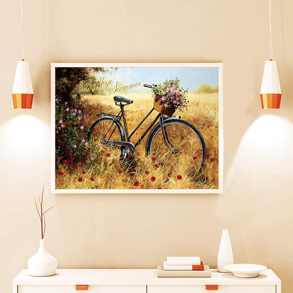 DCIDBEI DIY Diamond Painting Kits for Adults,Bicycle 5d Diamond Art Rhinestone Embroidery Cross Stitch Kits Supply Arts Craft Canvas Wall Decor Stickers 12x16 inches