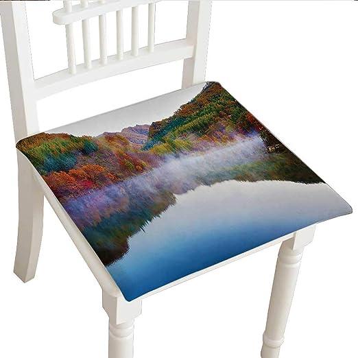 Cojín decorativo clásico para silla (14