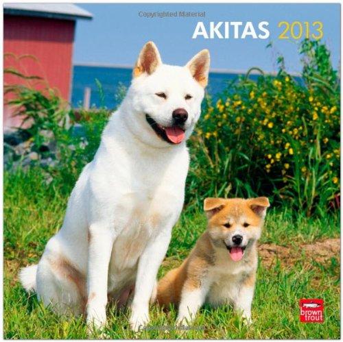 Akitas 2013 - Original BrownTrout-Kalender