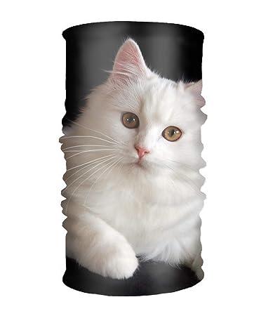 Amazon.com   Persian Cat Headwear Multipurpose Head Wrap Sport Headband  Sweatband   Beauty 89efef9ee15