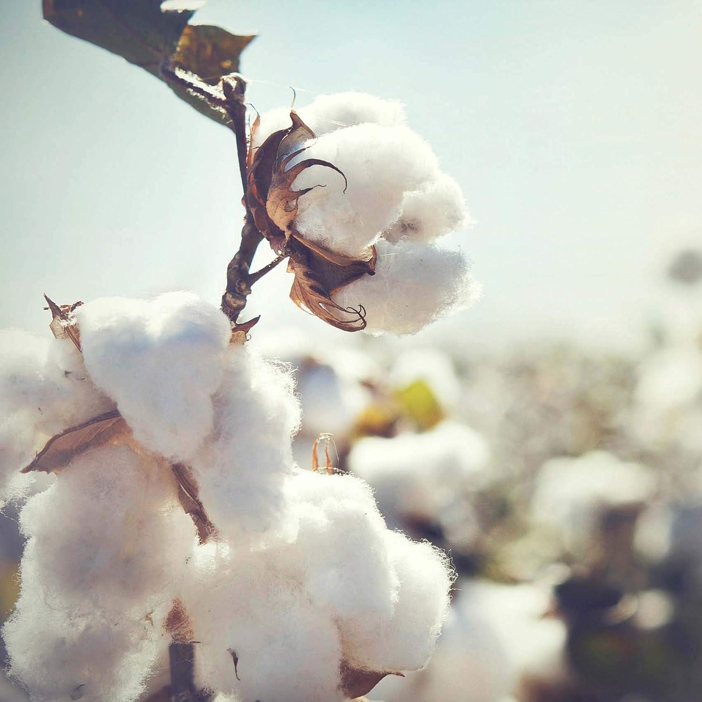 100/% Baumwolle 29 cm x 15m Ma/ße ca waschbarer Bezug Meditationskissen praktisc #DoYourYoga/® Klassisches Yogakissen
