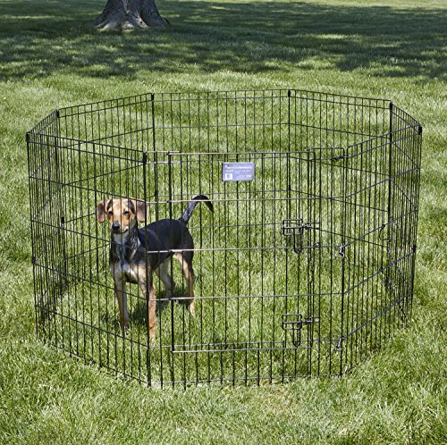 Large Product Image of MidWest Foldable Metal Exercise Pen / Pet Playpen. Black w/ door, 24