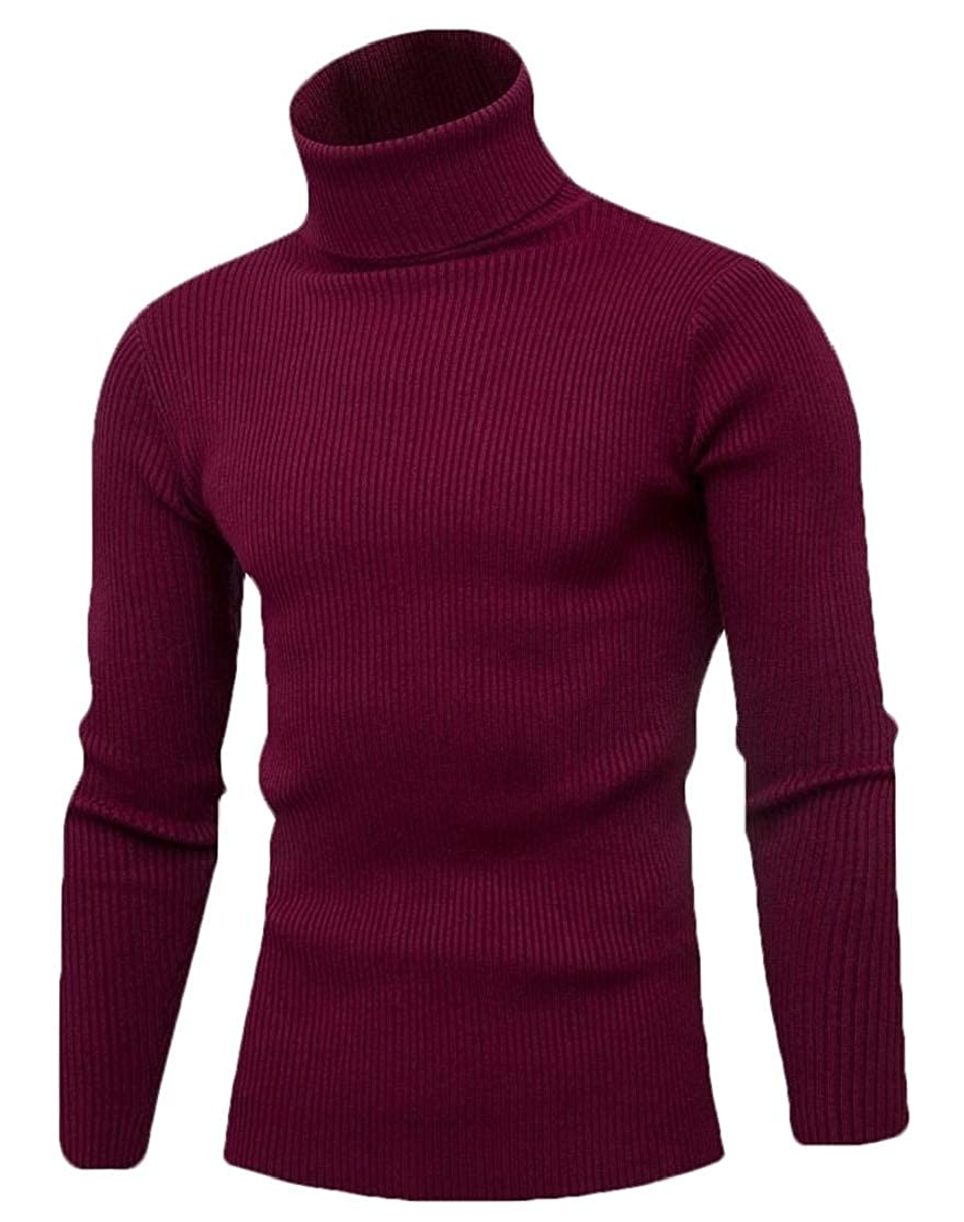 desolateness Mens Turtleneck Pullover Sweater Casual Basic Knitted Blouse