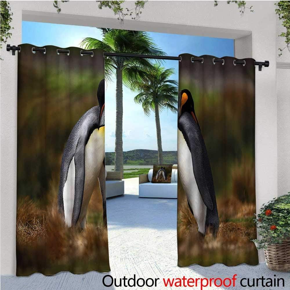 warmfamily Cortinas de Patio con diseño de Pareja de pingüinos para Exteriores, Cortinas de Patio, al Aire Libre: Amazon.es: Jardín
