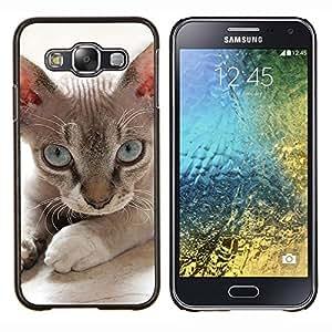 EJOOY---Cubierta de la caja de protección para la piel dura ** Samsung Galaxy E5 E500 ** --Devon Rex Donskoy Sphynx Minskin