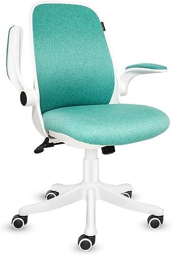 FULLWATT Office Chair Ergonomic Chair Swivel Seat Adjustable Lumbar Support Mid Mesh Back