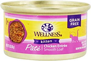 Wellness Kitten Can Cat